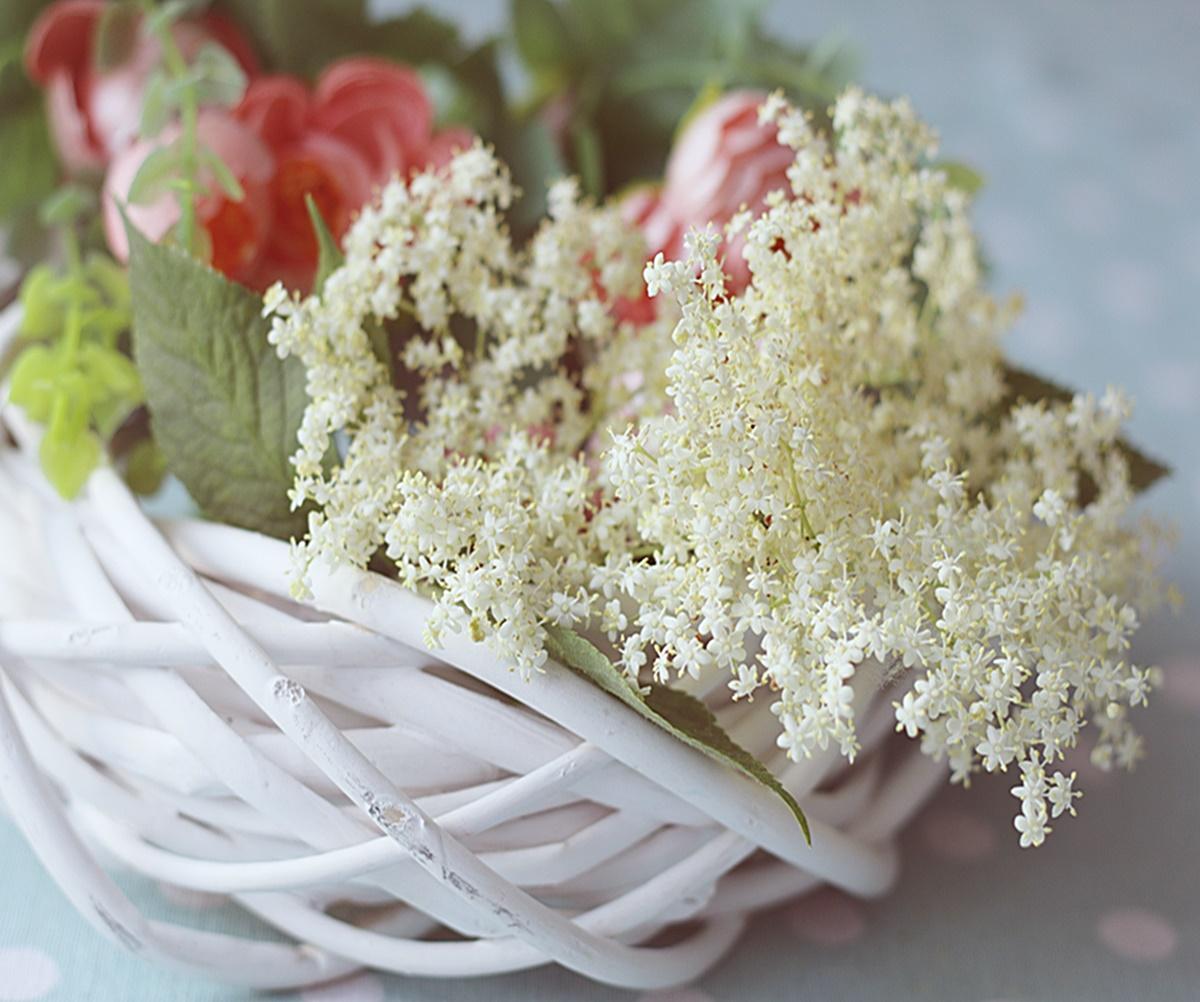 Suszone kwiaty czarnego bzu idealne są na herbatkę. Świeże kwiaty na miodek.