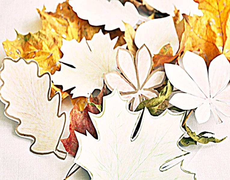 Liście z parku i liście z papieru