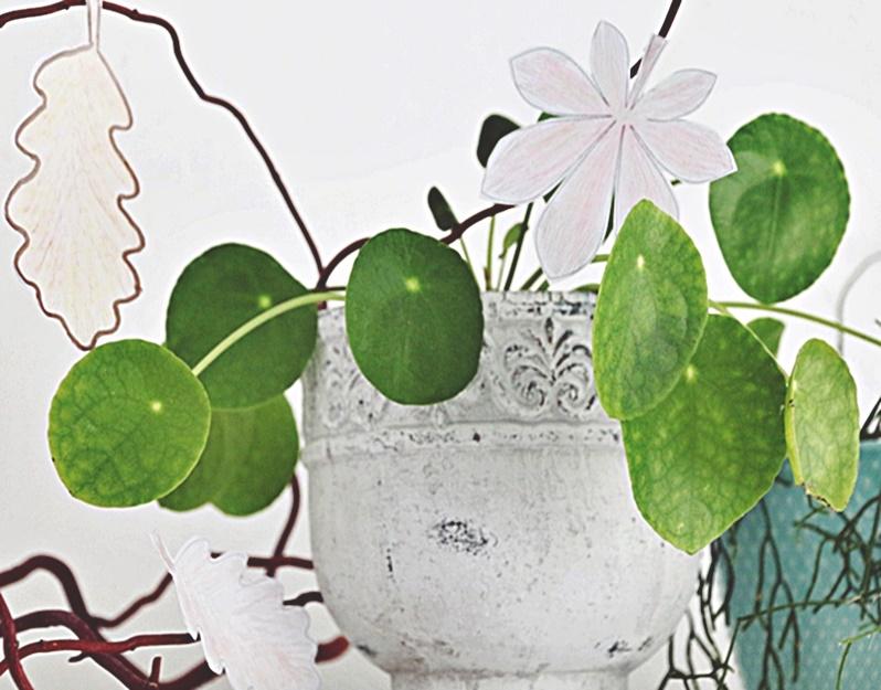 Dekoracja jesienna zielona rożlina i liscie z papieru